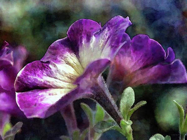 Photograph - Soft Texture 6694 Idp_2 by Steven Ward