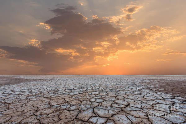 Wall Art - Photograph - Soil Drought Cracked Landscape Sunset by Philipyb Studio