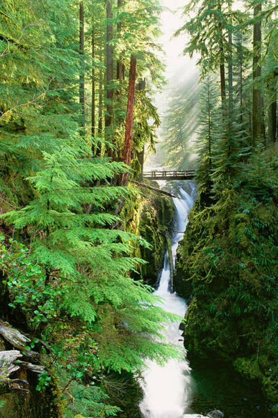 Olympic Peninsula Photograph - Sol Duc Falls Are In The Forest Of by Mint Images - David Schultz
