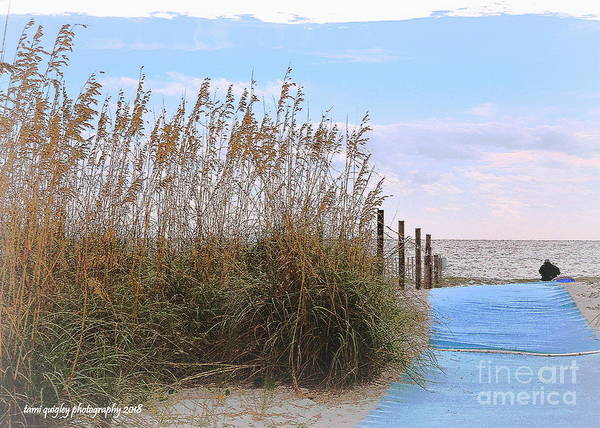Wall Art - Photograph - Soliloquy On A Southern Shore by Tami Quigley
