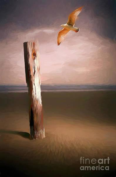 Wall Art - Digital Art - Solitary Flight Ap by Dan Carmichael
