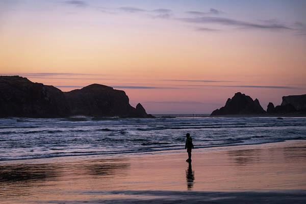 Photograph - Solitary Reflections by Steven Clark