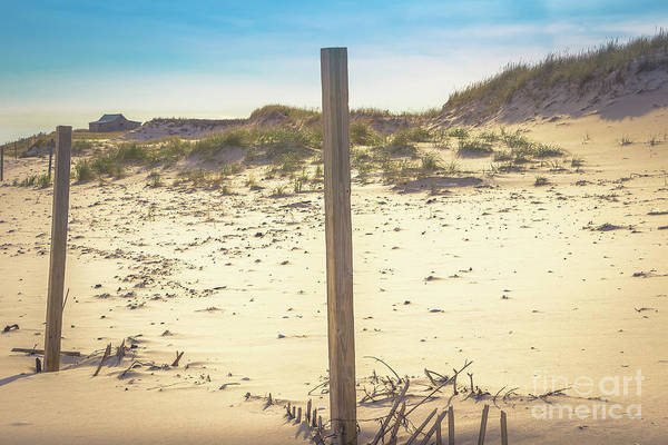 Wall Art - Photograph - Solitude - Island Beach by Colleen Kammerer