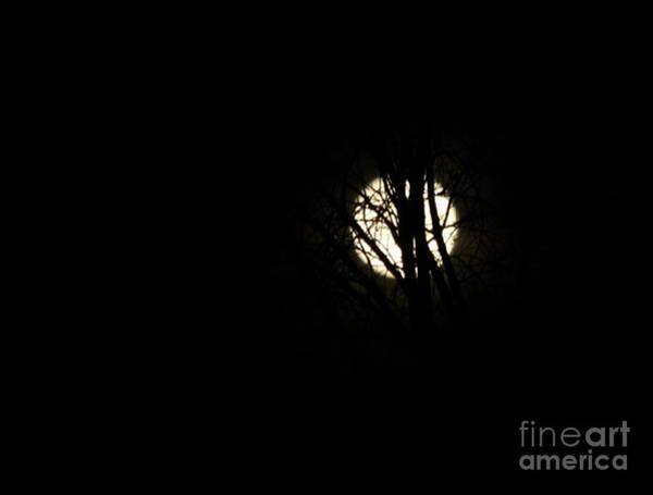 Photograph - Solstice Moonset by Ann E Robson