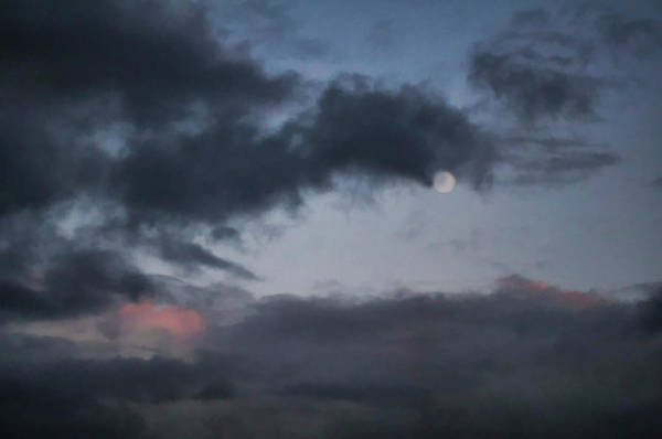 Photograph - Somber Moon  by Kathleen Gauthier