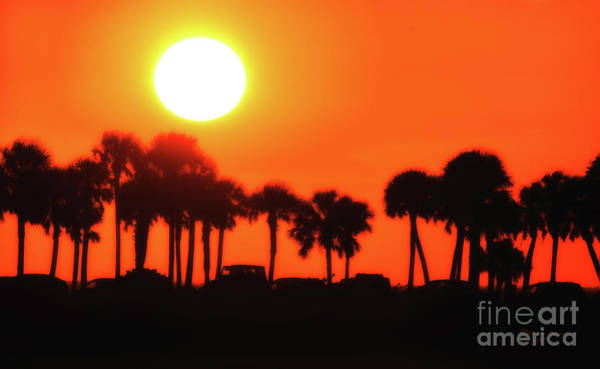 Wall Art - Photograph - Some Like It Hot by Marvin Spates