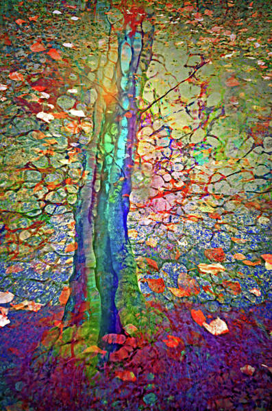 Wall Art - Digital Art - Sometimes Rainbows Can Be Found On The Inside by Tara Turner