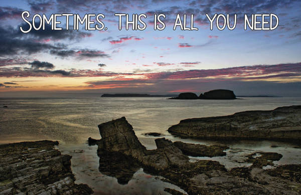 Photograph - Sometimes, This Is All You Need by Colin Clarke