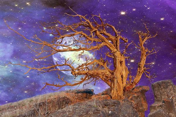 Digital Art - Somewhere In The Universe by Ramona Murdock