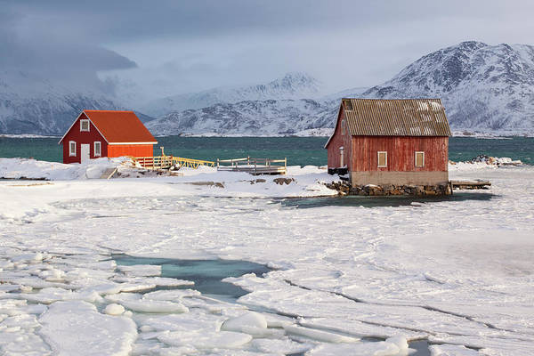 Log House Photograph - Sommarøya Seafront by Antonyspencer