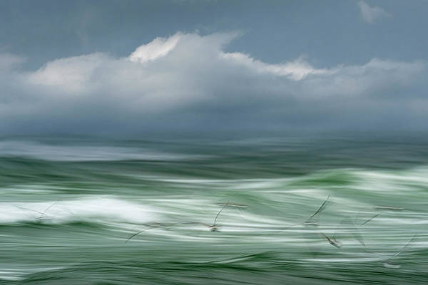 Photograph - Song Of The Sea by John Whitmarsh