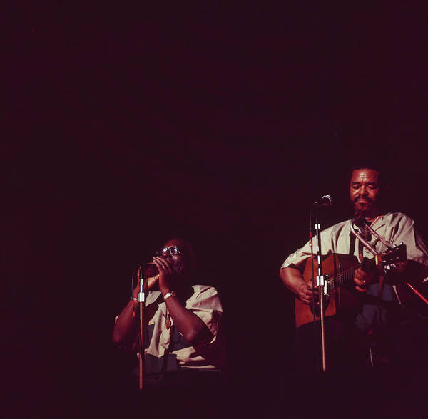 Popular Culture Photograph - Sonny Terry And Brownie Mcghee Perfom by David Redfern