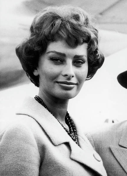 Photograph - Sophia Loren 1958 by Keystone-france