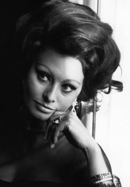 Photograph - Sophia Loren by Express Newspapers