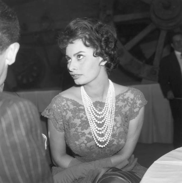 Photograph - Sophia Loren by Michael Ochs Archives