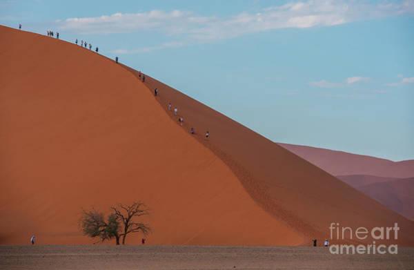 Wall Art - Photograph - Sossusvlei Climbing Dune 45 by Mike Reid