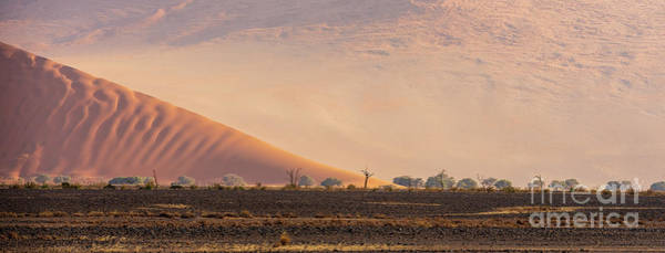 Wall Art - Photograph - Sossusvlei Dunes And Trees by Mike Reid