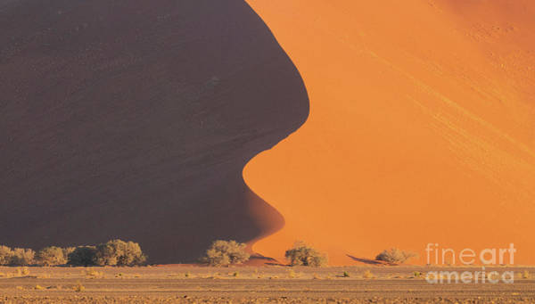 Wall Art - Photograph - Sossusvlei Dunes The Drop by Mike Reid