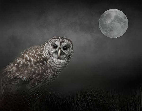 Soul Of The Moon Art Print