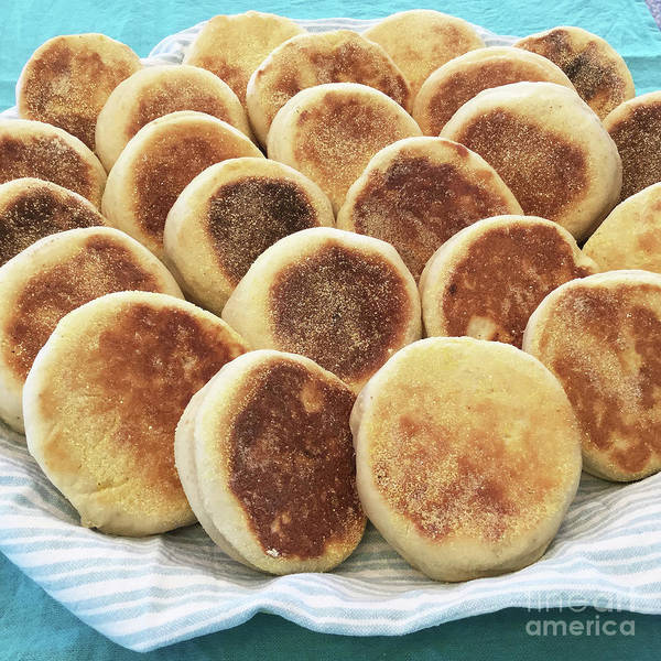 Photograph - Sourdough English Muffins 2 by Amy E Fraser
