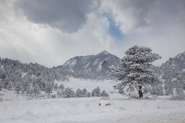 Wall Art - Photograph - South Boulder Peak Covered In Freshly Fallen Snow by Bridget Calip