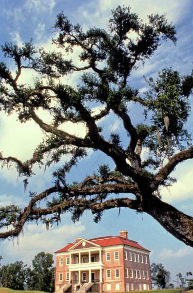 South Carolina Photograph - South Carolina, Charleston, Drayton by Jeff Greenberg/uig