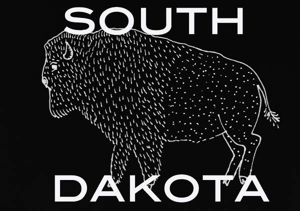 South Buffalo Mixed Media - South Dakota by Aaron Geraud