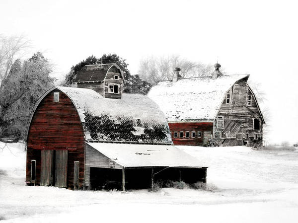 Farmhouse Photograph - South Dakota Farm by Julie Hamilton