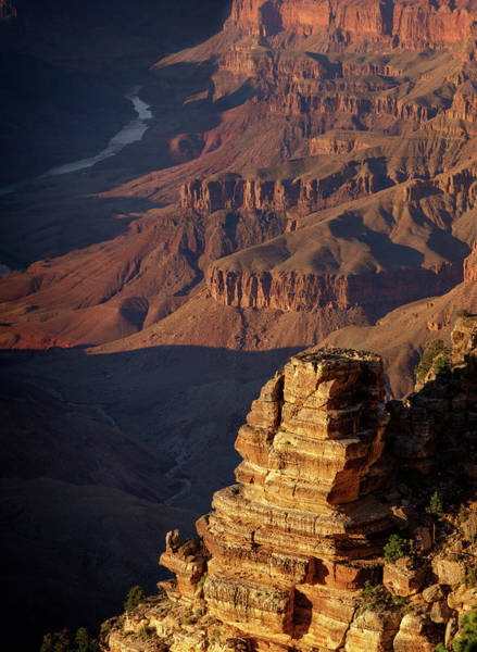 Wall Art - Photograph - South Rim Grand Canyon National Park Iv by Ricky Barnard