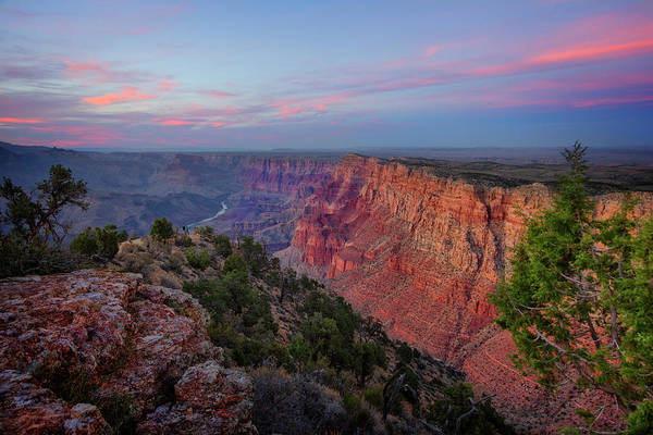 Wall Art - Photograph - South Rim Grand Canyon National Park Vii by Ricky Barnard