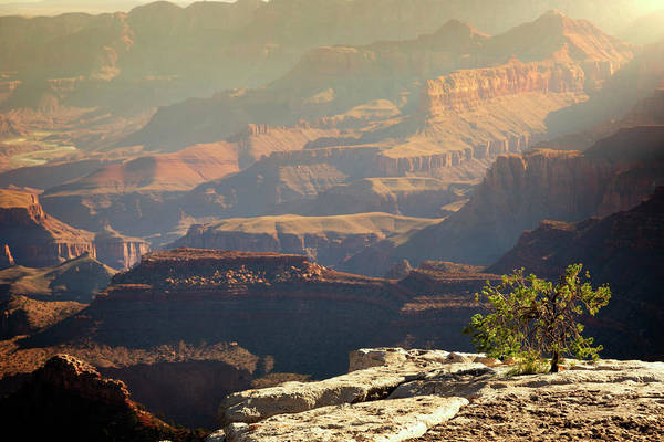 Wall Art - Photograph - South Rim Grand Canyon National Park Xix by Ricky Barnard