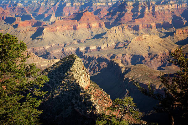 Wall Art - Photograph - South Rim Grand Canyon National Park Xviii by Ricky Barnard