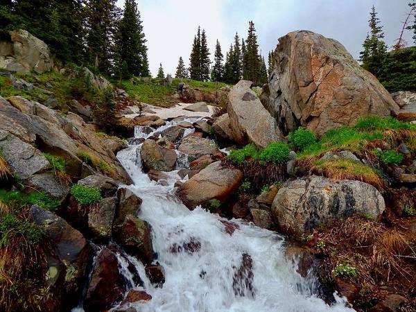 Photograph - South Saint Vrain Creek by Dan Miller