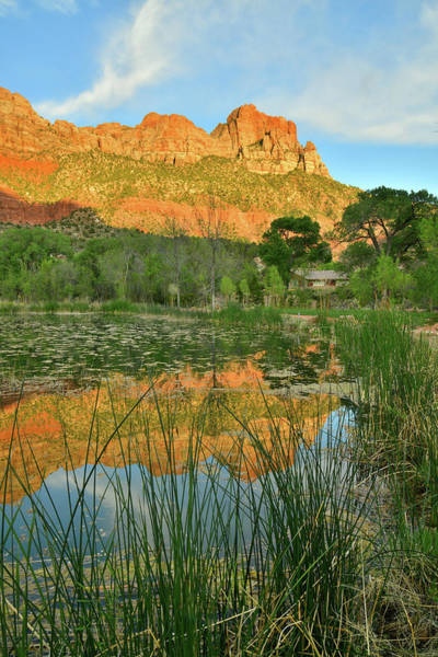 Photograph - South Watchman Pond Reflection In Zion Np by Ray Mathis