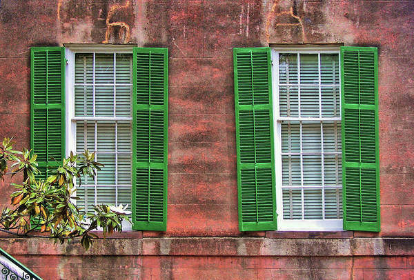 Photograph - Southern Charm by JAMART Photography