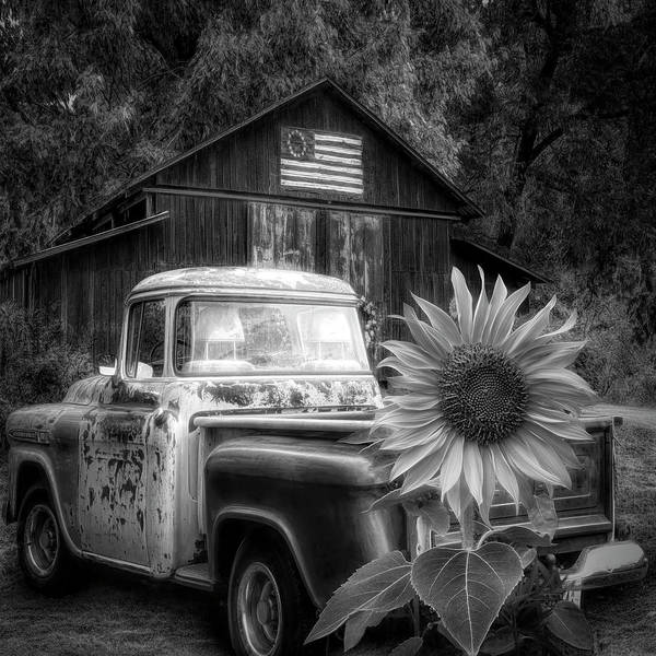 Wall Art - Photograph - Southern  In Black And White by Debra and Dave Vanderlaan
