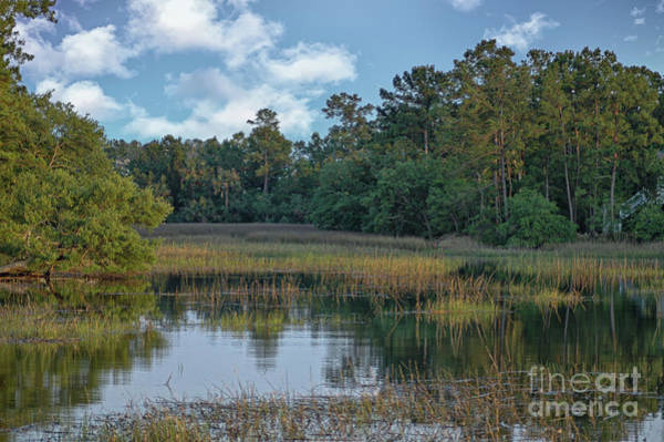 Photograph - Southern Marsh View - Mount Pleasant South Carolina by Dale Powell