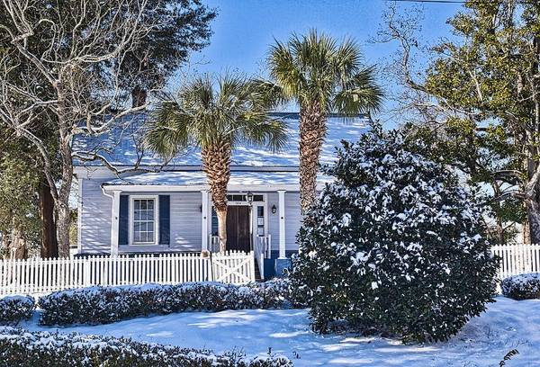 Wall Art - Photograph - Southern Snow by Linda Brown