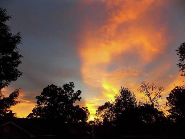 Photograph - Southern Sunset by Matthew Seufer