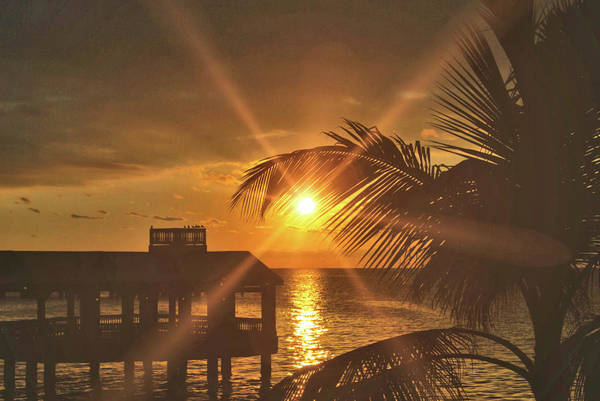 Photograph - Southernmost Key by JAMART Photography