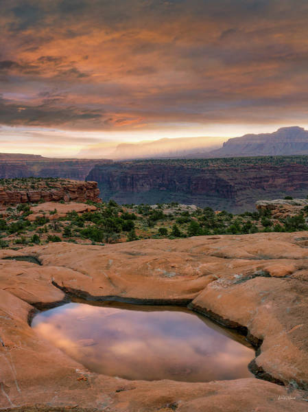 Photograph - Southwest Reflections by Leland D Howard