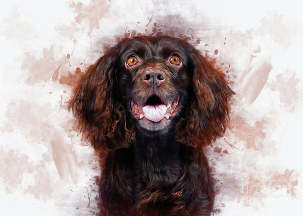 Digital Art - Spaniel by Ian Mitchell