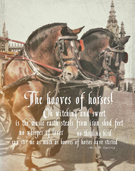 Photograph - Spanish Horses Quote by JAMART Photography
