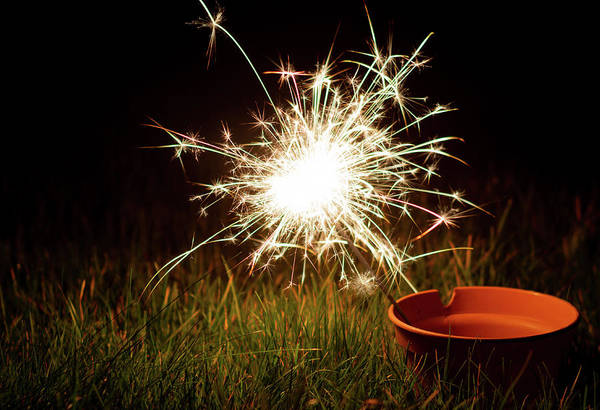 Photograph - Sparkler In A Plant Pot by Scott Lyons