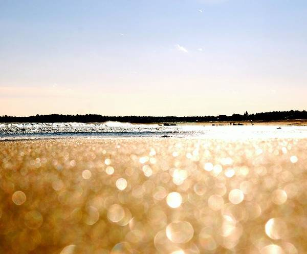 Orchard Beach Photograph - Sparkling Beach Sands by Photo By Kristin Zecchinelli