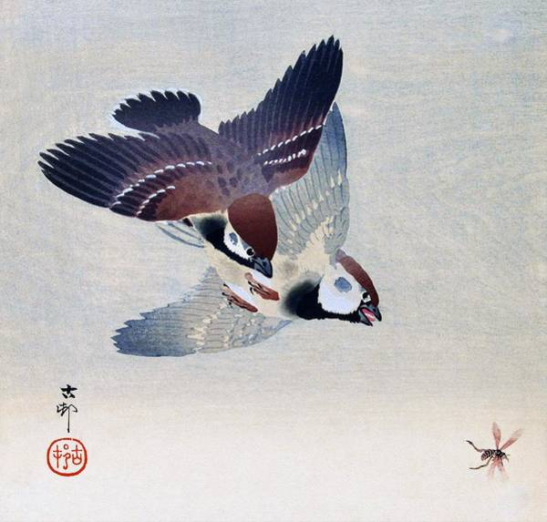 Wall Art - Painting - Sparrow And Bee - Digital Remastered Edition by Ohara Koson