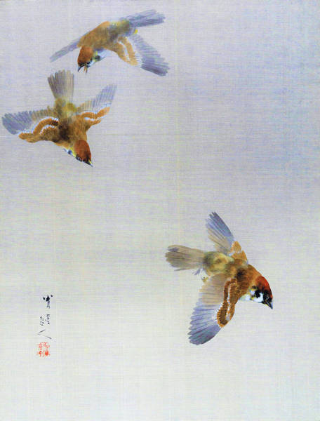 Wall Art - Painting -  Sparrows - Digital Remastered Edition by Watanabe Seitei