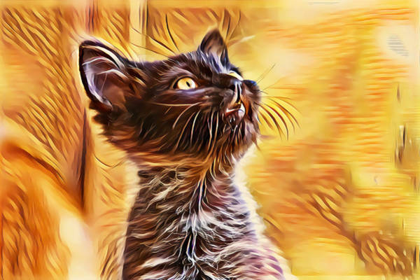 Digital Art - Special Long Neck Kitty by Don Northup
