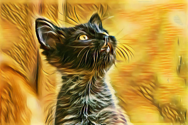 Digital Art - Special Long Neck Kitty Golden Eyes by Don Northup