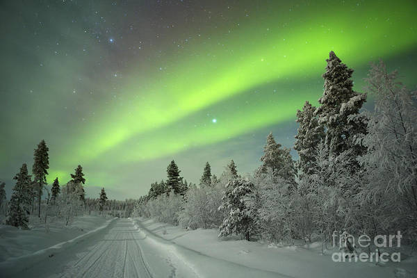 Wall Art - Photograph - Spectacular Aurora Borealis Northern by Sara Winter